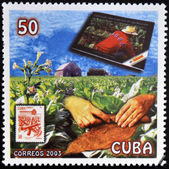 CUBA - CIRCA 2003: A stamp printed in cuba dedicated to Cuban cigars, shows snuff, circa 2003 — Stock Photo