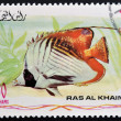 RAS AL-KHAIMAH - CIRCA 2006: A stamp printed in Ras al-Khaimah shows a fish, Chaetodon auriga, Threadfin butterflyfish, circa 2006 — Stock Photo
