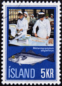 ICELAND - CIRCA 1975: A stamp printed in Iceland shows the fish melanogrammus aeglefius and women, circa1975. — Stock Photo