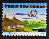 PAPUA NEW GUINEA - CIRCA 1995: A stamp printed in Papua dedicated to tourism shows resorts, circa 1995 — 图库照片