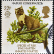 Stock Photo: UNITED KINGDOM - CIRC1986: stamp printed in Great Britain dedicated to nature conservation shows pine marten (Martes martes), circ1986