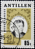 NETHERLANDS ANTILLES - CIRCA 1984: A stamp printed in Netherlands Antilles shows Eleanor Roosevelt — Stock Photo