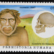 Stock Photo: CUB- CIRC1997: stamp printed in Cubdedicated to humprehistory shows Neanderthal man, circ1997