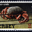 JERSEY - CIRCA 1973: A stamp printed in Jersey shows a spider-crab, circa 1973 — Stock Photo