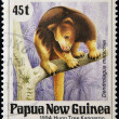 PAPUA NEW GUINEA - CIRCA 1994: A stamp printed in Papua shows a Huon Tree Kangaroo (dendrolagus matschiei), circa 1994 — Stock Photo