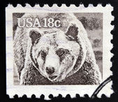 UNITED STATES OF AMERICA - CIRCA 1981: A stamp printed in USA shows Grizzly Bear, Ursus Arctos, circa 1981 — Stock Photo