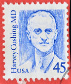 UNITED STATES OF AMERICA - CIRCA 1988: A stamp printed in USA shows image portrait of famous American neurosurgeon Harvey Cushing, Circa 1988. — Stock Photo