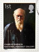 Wielka brytania - ok. 2006: znaczek wydrukowany w wielkiej brytanii poświęcone galerii narodowej portret pokazuje charles darwin przez john collier, około 2006 — Zdjęcie stockowe