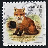 Schweden - circa 2005: briefmarke gedruckt in schweden zeigt fox, ca. 2005 — Stockfoto