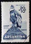 ARGENTINA - CIRCA 1960: A stamp printed in argentina shows condor, vultur gryphus, circa 1960 — Stock Photo