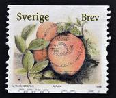 SWEDEN - CIRCA 2008: stamp printed in Sweden shows Apple, circa 2008 — Stock Photo