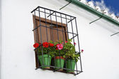 Window with pots of flower, Cordoba, Andalusia — Stock Photo