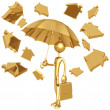 Raining Golden Home Symbols - Stock Photo