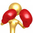 Boxing — Stock Photo #12358139