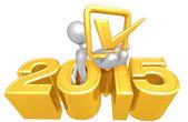 Check Mark,  2015  Year — Stock Photo