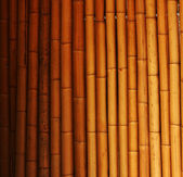 Light bamboo background. — Stock Photo