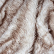 Fur texture. — Stock Photo
