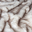Stock Photo: Fur texture.