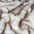 Fur texture. — Stock Photo #25785959