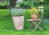 Zahradní scéna — Stock fotografie