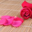 Rose and petals on a bamboo place mat — 图库照片