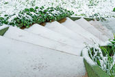 Stair and snow — Stock Photo