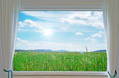 Meadow and window — Stock Photo