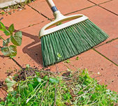 Grass and broom — Stock Photo