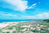 Prado y las nubes — Foto de Stock