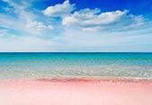Pink beach — Stock Photo