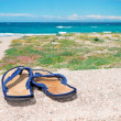 Flip flop and sea — Stock Photo