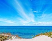 Sardinia dunes — Stock Photo
