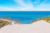 сардиния дюны — Стоковое фото