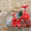 Stock Photo: Red spigot