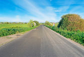 Asphalt in the countryside — Stock Photo