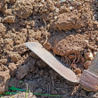 Foto Stock: Hoe and soil