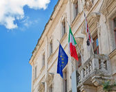 Flags at the Palace — Stock Photo