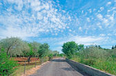 Country road and clouds — Stock Photo