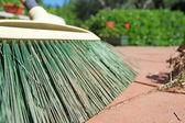 Green broom closeup — Stock Photo