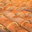 Stock Photo: Roof at dusk