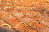 Roof at dusk — Stock Photo