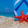 Stock Photo: Red starfish