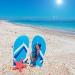 Stock Photo: Flip-flops and sun
