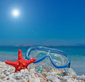 Seastar and diving mask — Stok fotoğraf