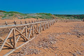 Palisade on the beach — Stok fotoğraf