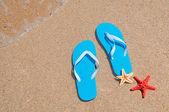 Estrela do mar e flip-flops em uma costa dourada — Fotografia Stock