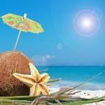 Coconut and umbrella — Stock Photo