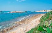 Deniz kaya — Stok fotoğraf