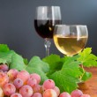 Grape and two glasses — Stock fotografie #31736863