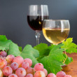 Foto Stock: Grape and two glasses